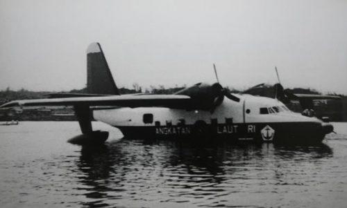 Albatross-01