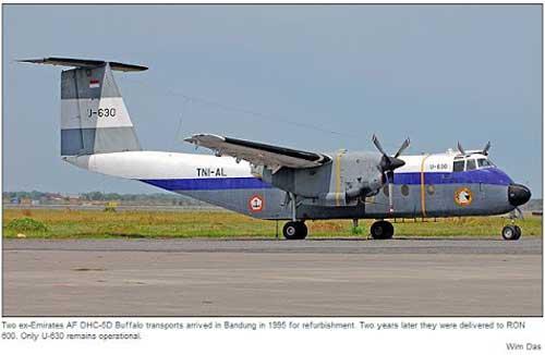 DHC-5 Buffalo milik TNI AL.