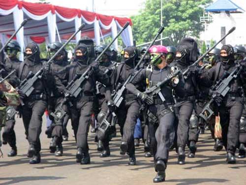 Prajurit Taifib Marinir TNI AL berparede dengan membawa Truvelo dan SMG K-7 Daewoo.