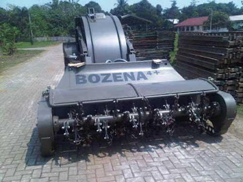 Bozena_1